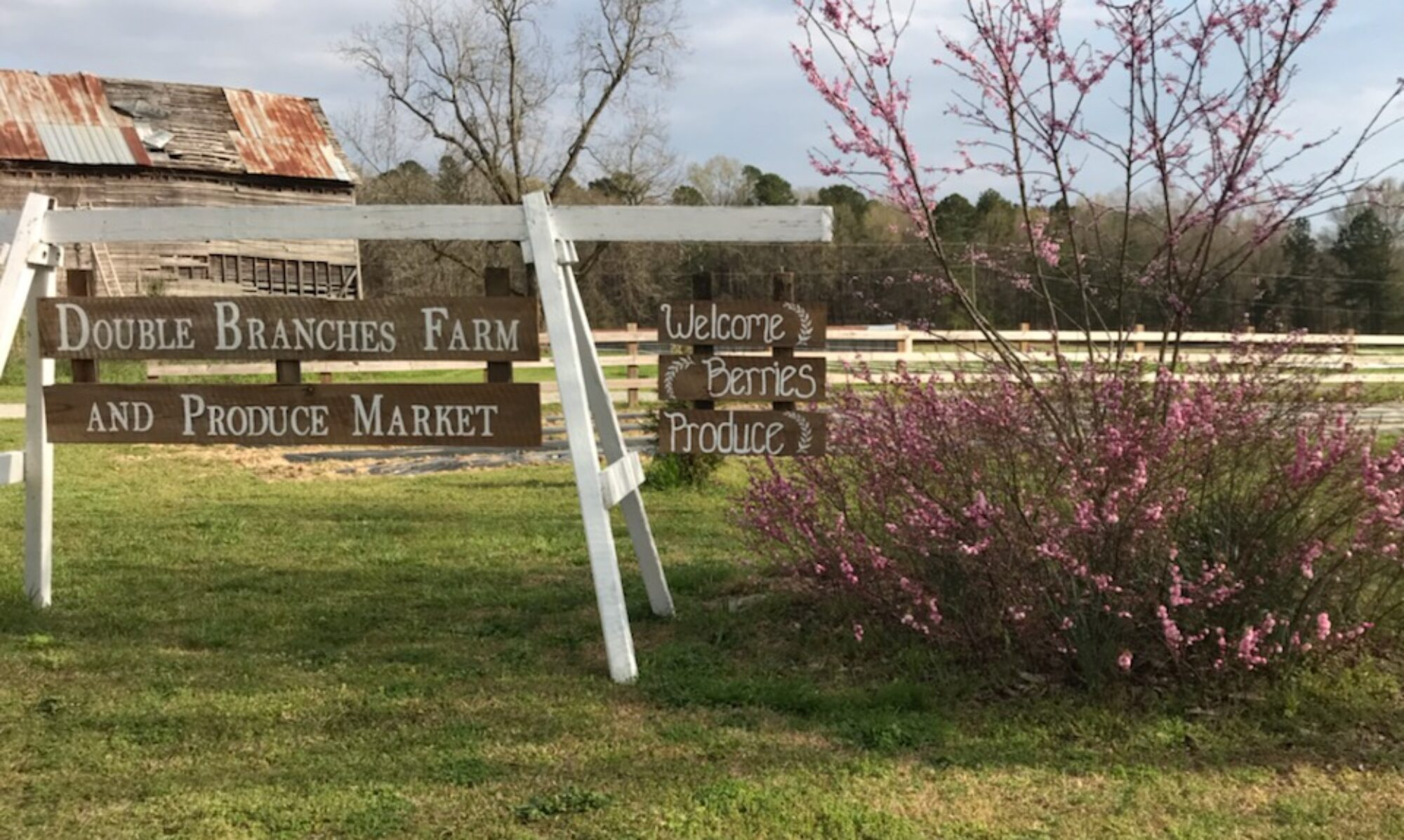 Double Branches Farm and Produce Market