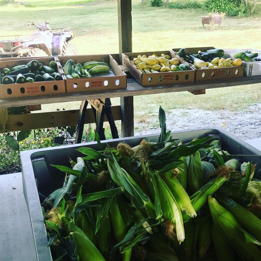 Corn and veggies ready in the market!