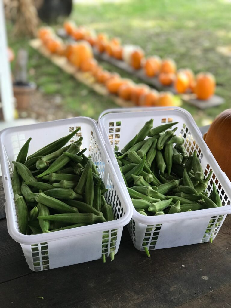 Who else loves fresh okra?